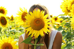 Beatiful girl. In the sunflowers field royalty free stock photos