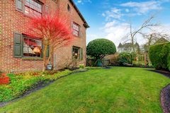 Beatiful green backyard with hedge and exotic red tree Stock Images