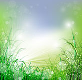 Beatiful green field with blur heaven and sunrise. Ray Royalty Free Stock Image