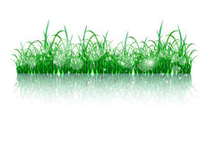 Beatiful green grass island Royalty Free Stock Images