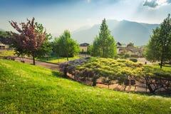 Beautiful italian garden with Alps royalty free stock image