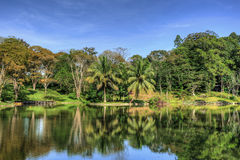 Beatiful lake. Beautiful view of the lake with trees and reflections Stock Images
