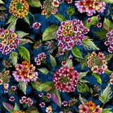 Beatiful lantana flowers with green leaves on black and blue background. Seamless floral pattern. Watercolor painting. Hand drawn illustration. Can be used as stock illustration