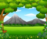 Beatiful mountain in forest Stock Photo