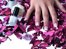 Beatiful nails Royalty Free Stock Image