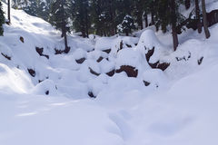 Beatiful snow scape in Dalhousie Royalty Free Stock Photography
