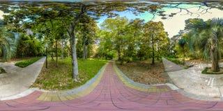 Beatiful view of arboretum and Nature. Dendrarium stock photography