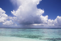 Beatiful white clouds on the blue sky over the oce Stock Images