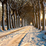 Beatiful Winter Day Royalty Free Stock Photography