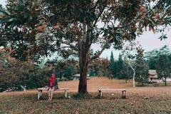 BEATIFULL地方印度尼西亚 图库摄影