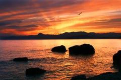Beatifull Sunset Stock Images