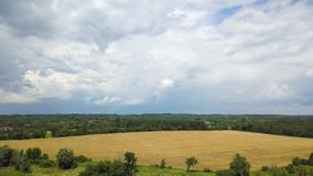 Beatifull wheat and grass field, country summer dark stormy clouds background. Aerial view of Beatifull wheat and grass field Flying with drone above country stock video footage