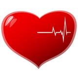 Beating Heart Royalty Free Stock Photos