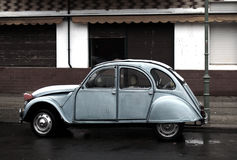 Beatle allemand Image stock