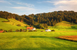 Beatuful hillside before sunset. Stock Photography