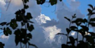 Beatuy av himlen arkivfoto