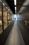 Beaty生物多样性博物馆 免版税库存图片