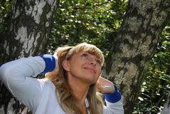 beaty δάσος Στοκ εικόνες με δικαίωμα ελεύθερης χρήσης