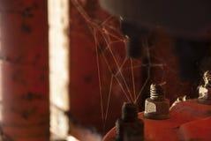 Beaty rustique Photographie stock libre de droits