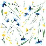 Beau adoucissez les lupins et les bleuets colorés de delphiniums de ressort floral lumineux sensible tendre avec les bourgeons et Images libres de droits