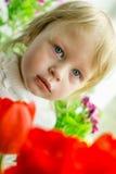 Beau bébé des tulipes rouges Images stock
