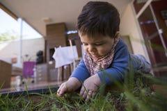 Beau bébé garçon remuant dans l'herbe photo stock