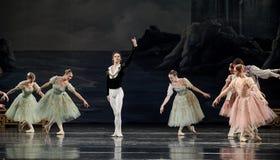 Beau ballet Photographie stock