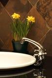 Beau bassin dans une salle de bains Photos stock