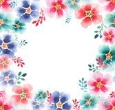 Beau beau cadre coloré magnifique artistique de fines herbes floral tendre sophistiqué de mauve de ressort mignon merveilleux Photo stock