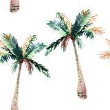 Beau beau modèle de fines herbes floral merveilleux tropical vert mignon lumineux d'été d'Hawaï d'un croquis de main d'aquarelle  Photo stock