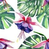 Beau beau modèle de fines herbes floral tropical coloré lumineux d'été d'Hawaï Photographie stock libre de droits