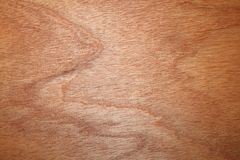 Beau bois texturisé Photographie stock libre de droits