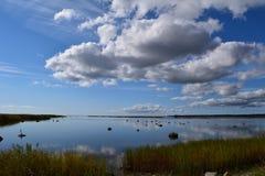 Beau bord de la mer silencieux dans Kuressaare, Estonie Photos stock