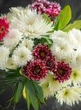 Beau bouquet avec des asters, des chrysanth?mes et des gerberas photographie stock