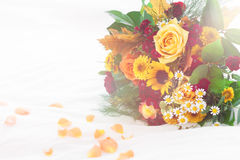 Beau bouquet coloré de ressort ou d'été des fleurs sur le lit, h Images libres de droits