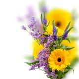 Bouquet de gerbera photographie stock libre de droits