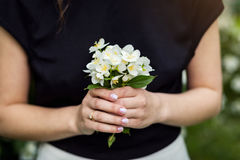 Beau bouquet de jasmin dans des mains de fille, main des jeunes tenant a Image libre de droits