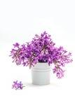 Beau bouquet de lilas dans un vase décoratif images stock