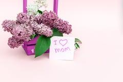 Beau bouquet de lilas et de carte pourpres sur le fond de papier pourpre Photo libre de droits