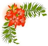 Beau bouquet de lis Image stock