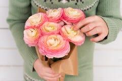 Beau bouquet de ranunculus rose mou dans des mains de l'enfant Photographie stock