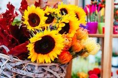 Beau bouquet de tournesol photo libre de droits