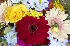 Beau bouquet des fleurs Images stock