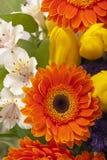 Beau bouquet des fleurs colorées de ressort. images stock
