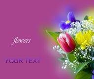 Beau bouquet des fleurs de source Images libres de droits