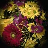 Beau bouquet des fleurs et du chrysanthème de gerbera sur un diff Photos stock