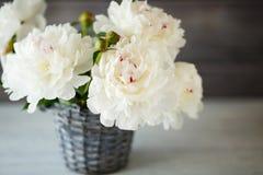 Beau bouquet des pivoines blanches photographie stock libre de droits