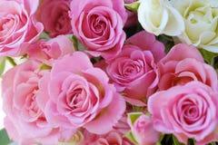 Beau bouquet des roses blanches et roses Photo libre de droits