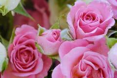 Beau bouquet des roses blanches et roses Images libres de droits