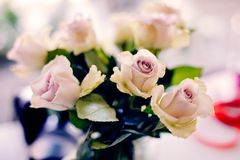 Beau bouquet des roses de rose en pastel Photos libres de droits